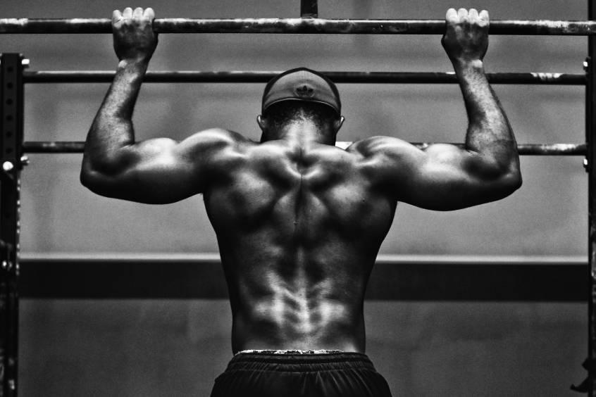 mięśnie aktywowane w treningu kalisteniki siłowo wytrzymałościowym
