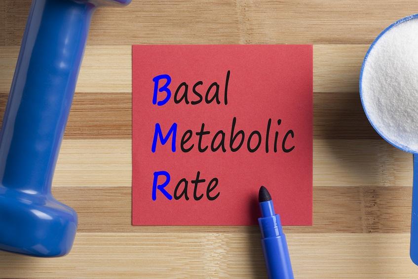 Obliczanie zapotrzebowania kalorycznego BMR basal metabolic rate